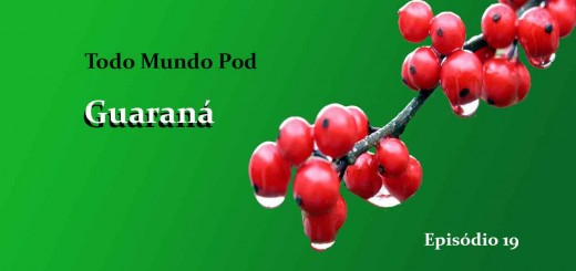 Brazilian guarana is a fruit that generates a seed used to make syrups , soft drinks and which is also used for slimming