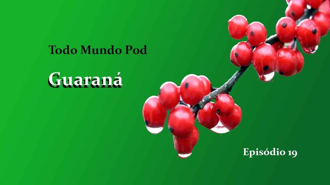 brazilian guarana