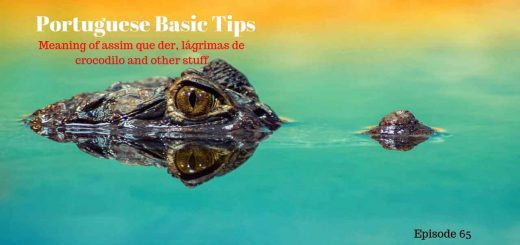 Learn the meaning of Meaning of assim que der, lágrimas de crocodilo and other stuff