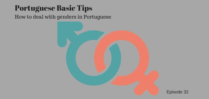 Portuguese grammar to indicate nouns and genders in Portuguese