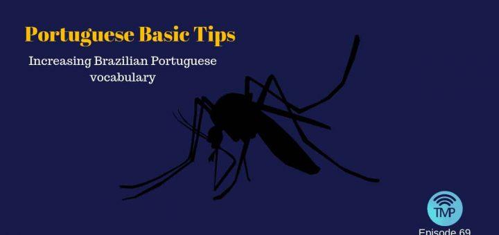 Increasing Brazilian Portuguese vocabulary